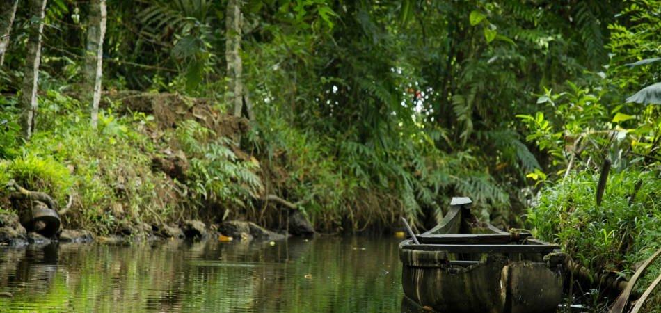 Kerala, the Land of Beauty