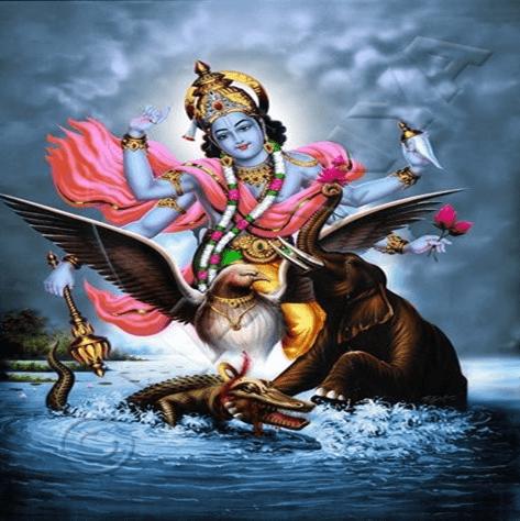Gajendra Moksha Agastya's Curse